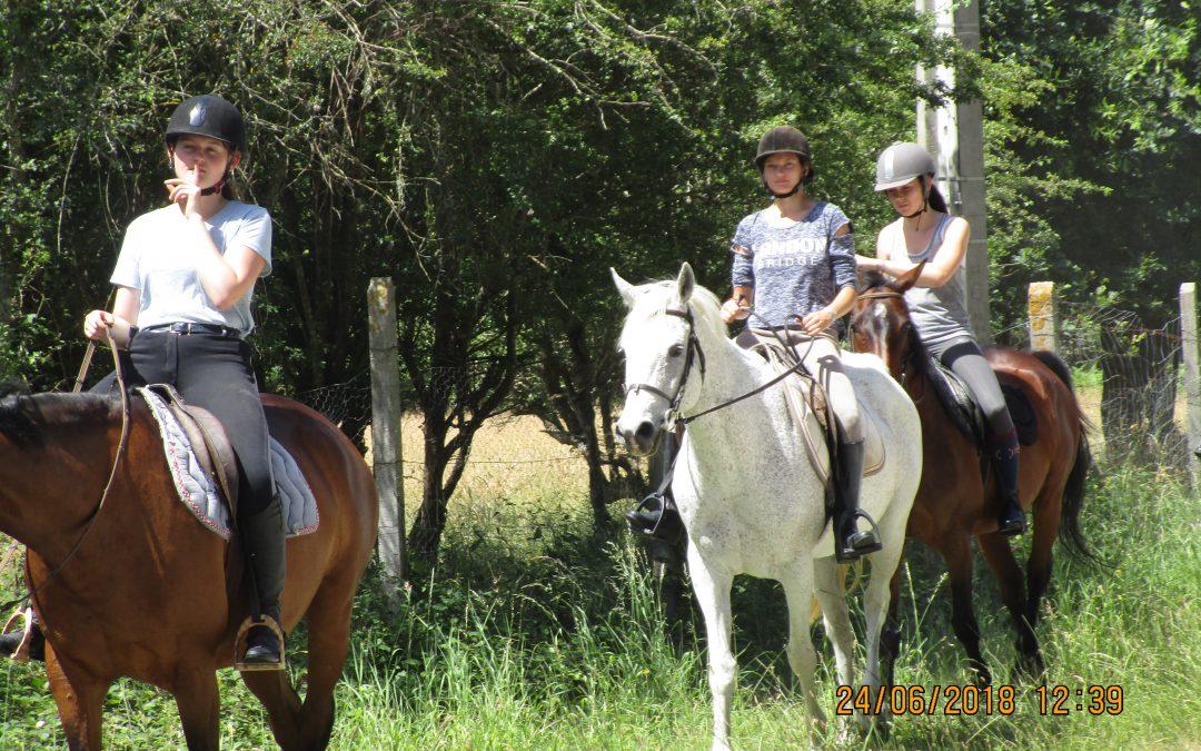 Randonnée cheval à Hourtin 23-24/06/2018